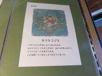 日本全国の妖怪 (4)_200