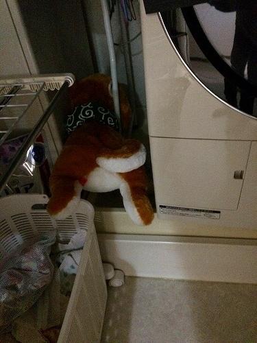洗濯機の華ちゃん