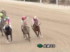 20170226 佐賀8R C1 ダノンラブリー 03