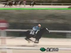 20170312 佐賀1R C2 オウケンボクサー 初勝利 02