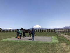 20170502 五月晴れのレイクヴィラファーム&蝦夷富士こと羊蹄山^^b