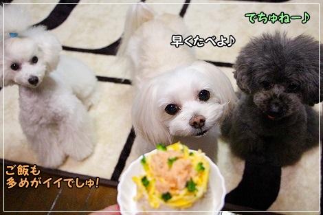 ちらし寿司と3姉妹 ②