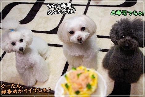 ちらし寿司と3姉妹