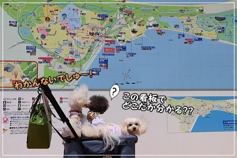えーっと…一応、海ノ中道海浜公園ね^^;