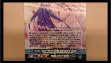 ange-vierge-niconama-170309-047.jpg