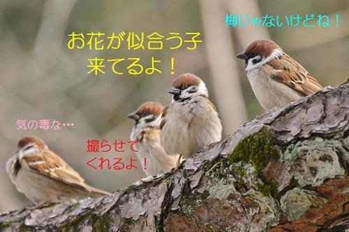 010_20170225182609bdf.jpg