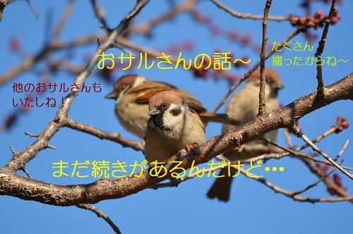 010_20170303185002298.jpg