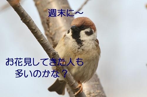 020_20170402202658fb5.jpg
