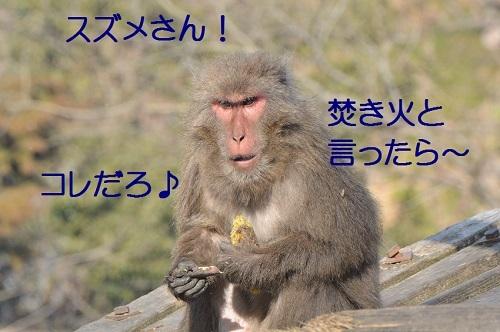 030_20170302194111861.jpg