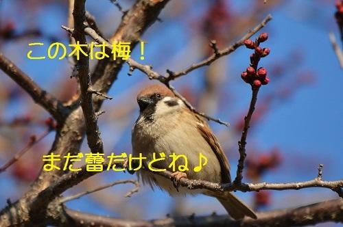 030_201703031850052b5.jpg