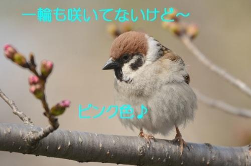 050_201703261935258a1.jpg