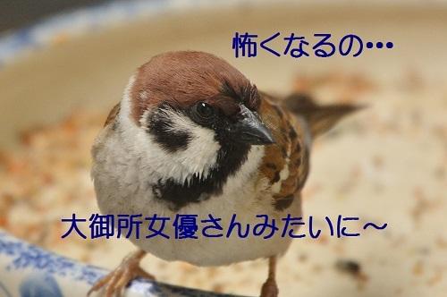 070_20170418192018b38.jpg