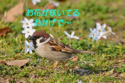 070_20170502171732eaa.jpg
