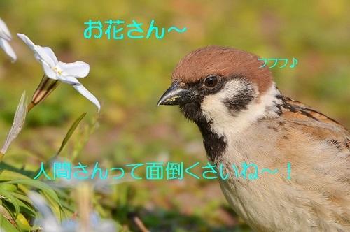 110_2017050217184026e.jpg