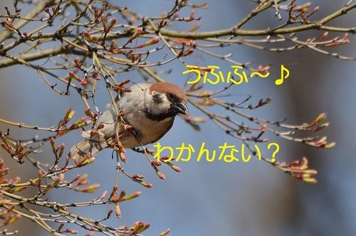 130_2017042019160999b.jpg