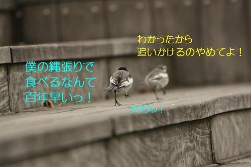 140_201702201916551f8.jpg