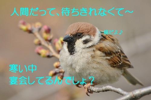 140_201703261937185ad.jpg