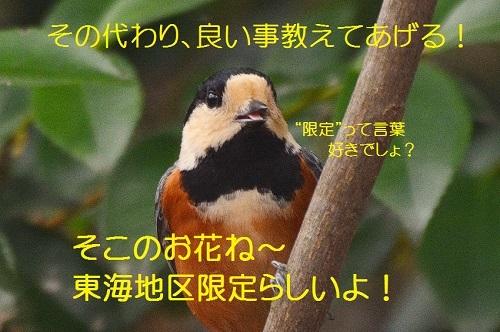140_201704162116261c9.jpg
