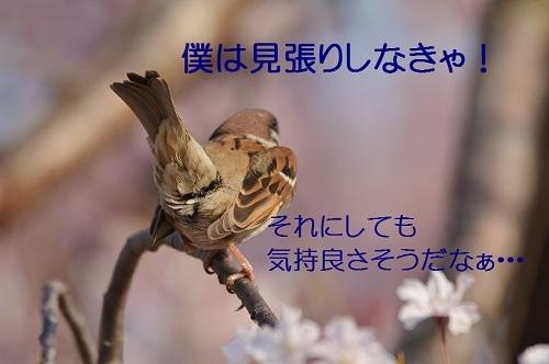 150_201704172003192e5.jpg