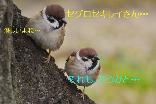 170_20170220191727d28.jpg