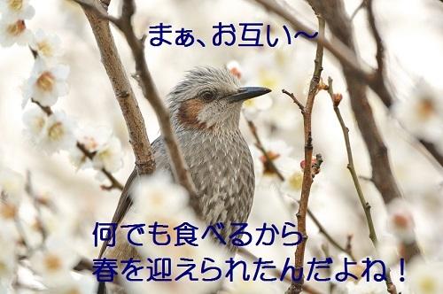 190_20170322192007730.jpg