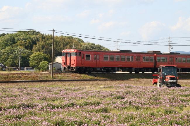 FC2B4976.jpg
