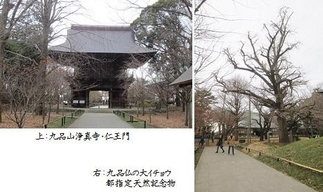 b0222-9 浄真寺①