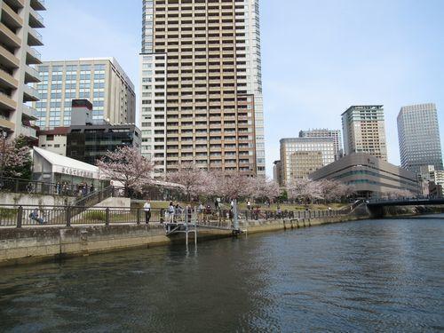 目黒川22