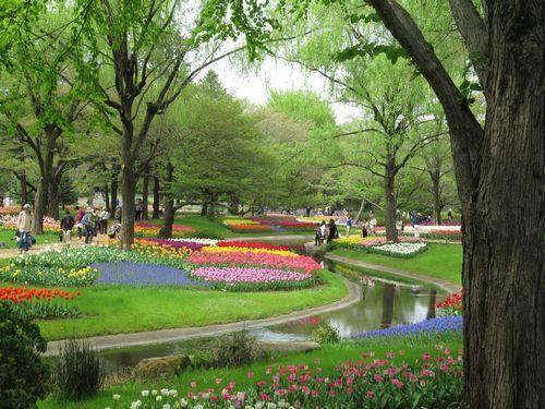 昭和記念公園15