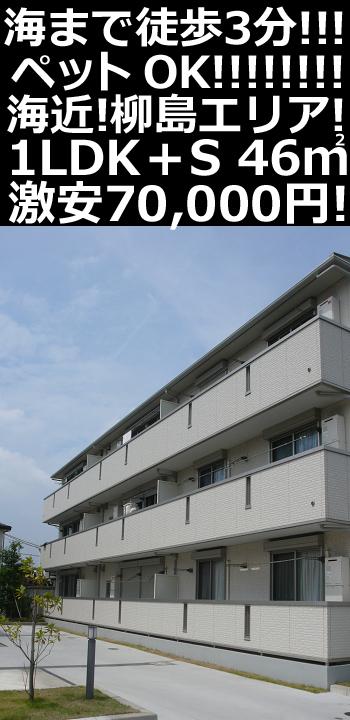 ■物件番号P4906 柳島エリア!海3分!ペット可!1LDK+S+WIC!オートロック!築浅キレイ!格安7万円!