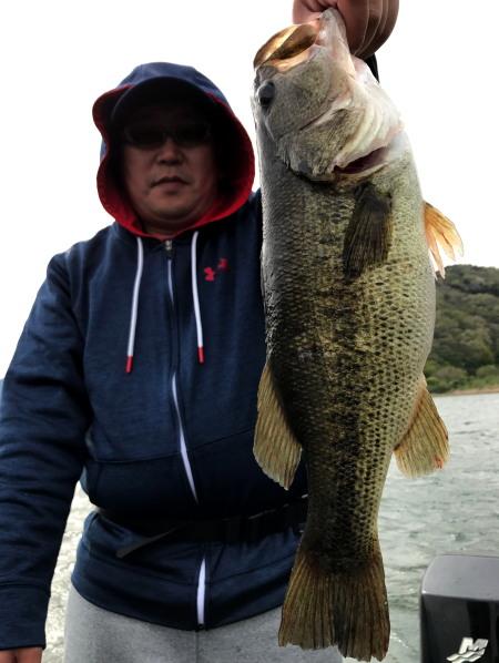 bass49450.jpg