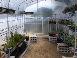 いよいよ自作グラグラな花台を置いて室内観葉植物をビニールハウス遮光ネット置き場へ運びます♪2017.04.06