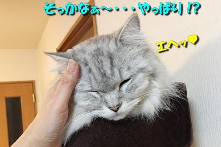男のムダ毛処理大作戦14