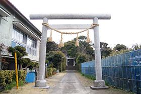 170222富浦 愛宕神社の楠⑦