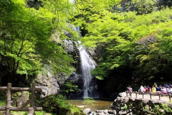 ⑫箕面の滝 (550x367)