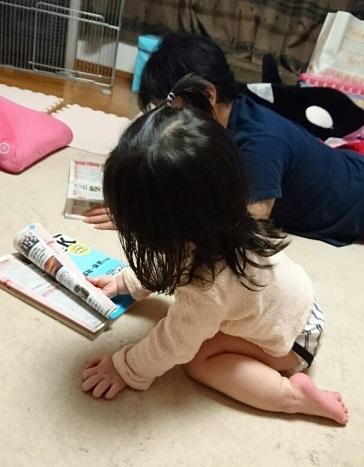 仕事探し 20170426