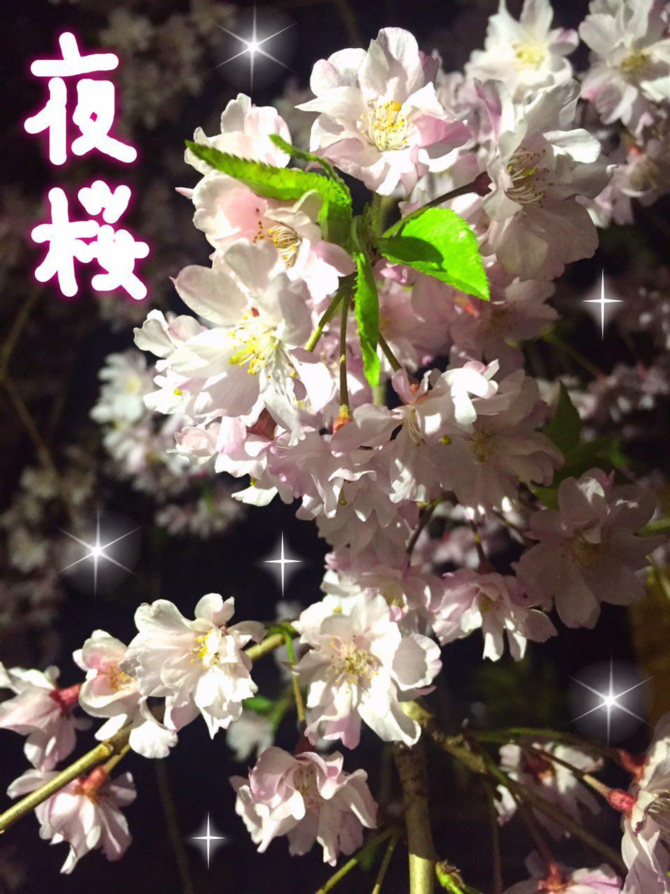 photo_2017-04-14_23-09-49 (2)