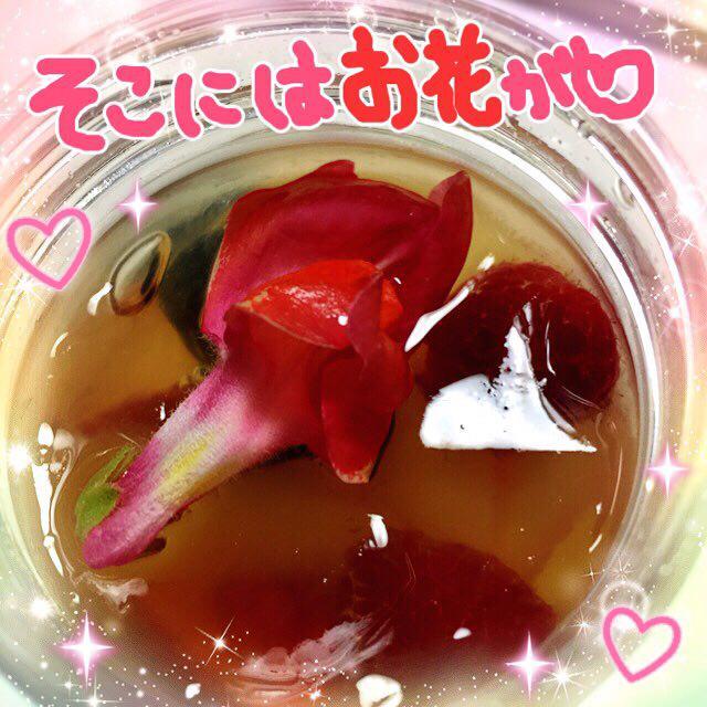 photo_2017-02-21_00-35-16.jpg