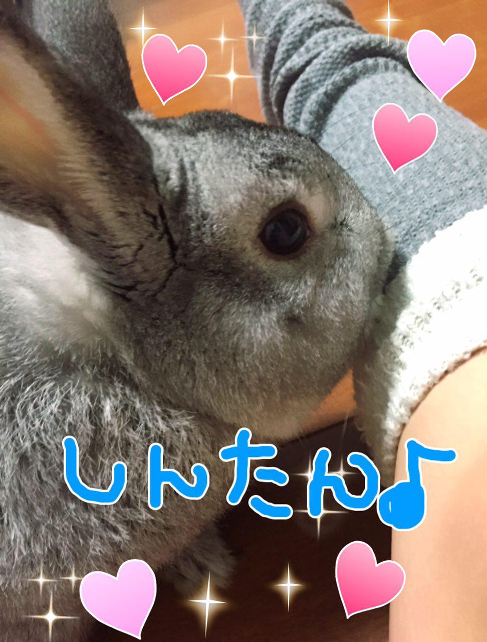 photo_2017-03-05_01-28-16.jpg