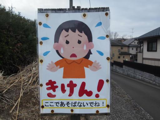 20170218・三寒四温散歩1-10