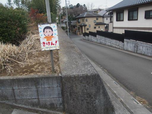 20170218・三寒四温散歩1-09