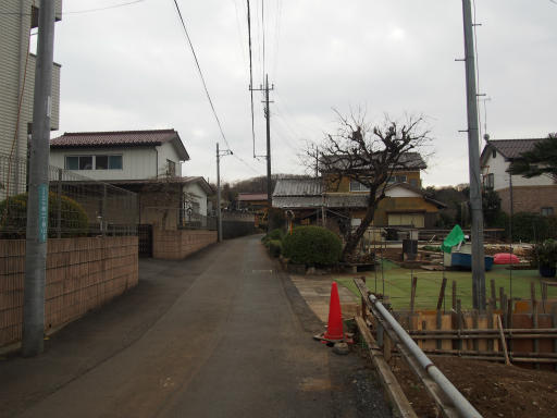 20170218・三寒四温散歩2-01