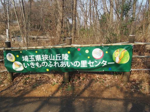 20170312・荒幡多摩湖散歩2-01