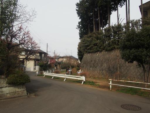 20170318・3月中旬の狭山湖03