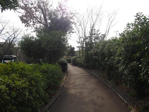 20170318・3月中旬の狭山湖04