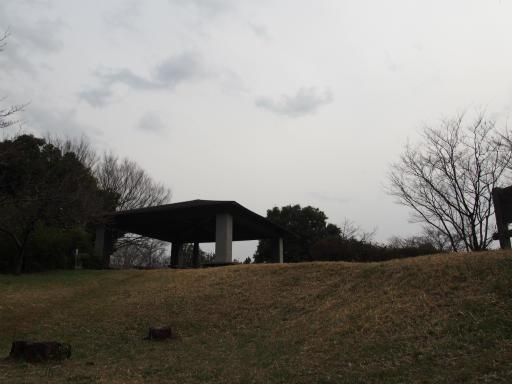 20170318・3月中旬の狭山湖16