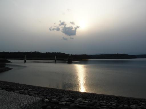 20170318・3月中旬の狭山湖21