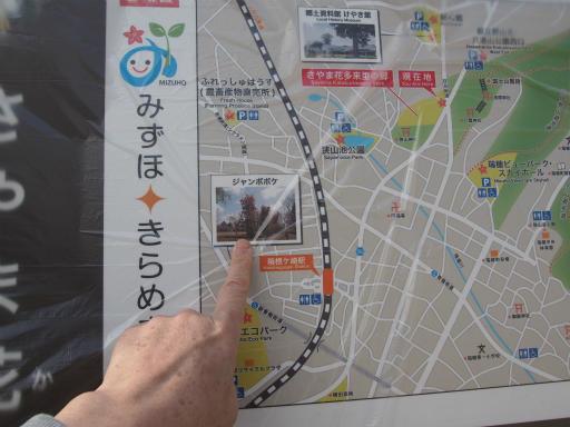 20170325・金仙寺瑞穂3-18