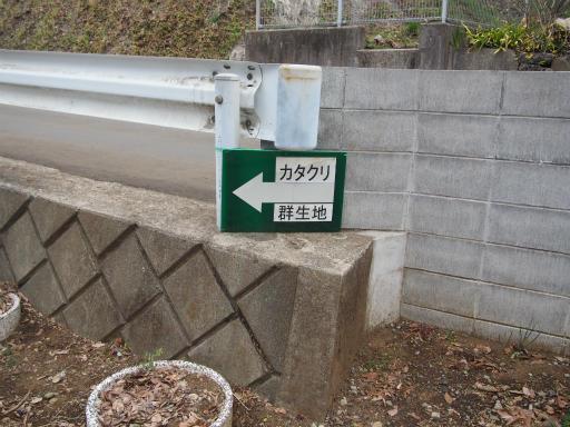 20170401・野山北公園1-03