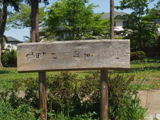 20170416・気まぐれ街歩き4-10・栄町二丁目樹林地